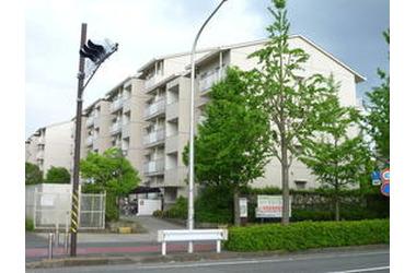 シーブリーズ金沢 1階 3LDK 賃貸マンション