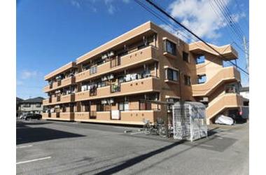 江曽島 徒歩30分 2階 2LDK 賃貸マンション
