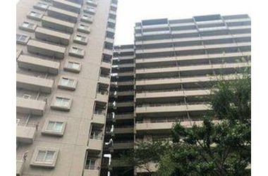 大宮 徒歩7分 3階 3LDK 賃貸マンション