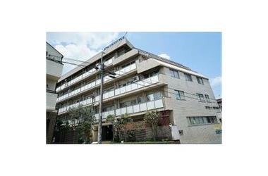 ステラ コート 大山 5階 4LDK 賃貸マンション