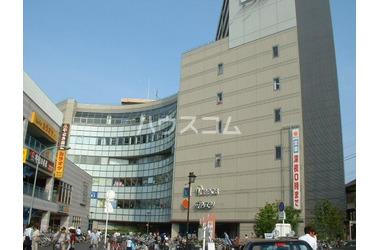 ミレニティ中山 10階 3DK 賃貸マンション