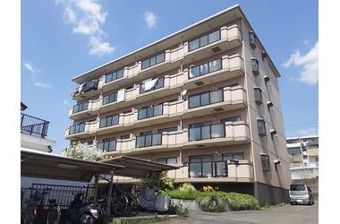 五百羅漢 徒歩15分 4階 3DK 賃貸マンション