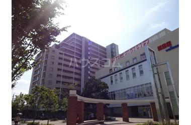 京成金町 徒歩8分 10階 3LDK 賃貸マンション