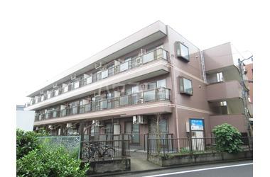 中野島 徒歩17分 1階 2LDK 賃貸マンション