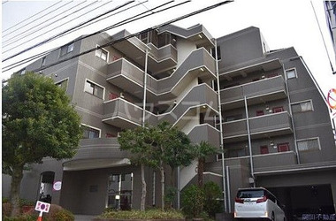 江戸川 徒歩8分 3階 1R 賃貸マンション