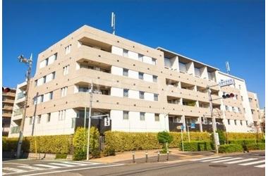 上町 徒歩12分 1階 3LDK 賃貸マンション