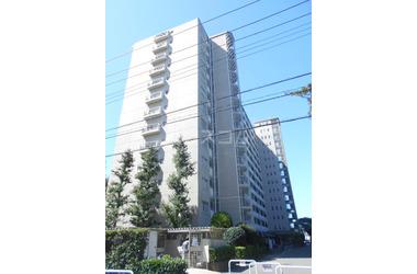 新松戸南パークハウスB棟 1階 3LDK 賃貸マンション