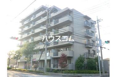 東川口 徒歩10分 7階 2LDK 賃貸マンション
