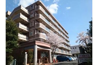 東戸塚 徒歩3分 1階 1LDK 賃貸マンション
