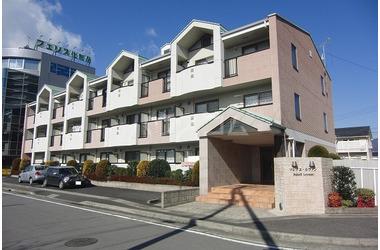 ソレイユ・ルヴァン 2階 1K 賃貸マンション