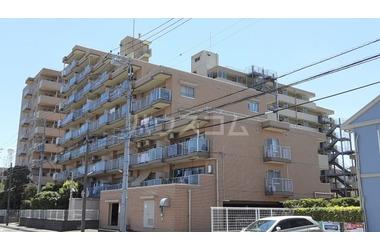 エクセル市川 5階 3LDK 賃貸マンション