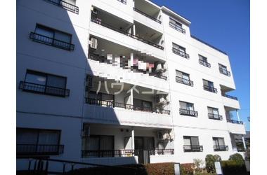 緑町 徒歩18分 2階 3DK 賃貸マンション