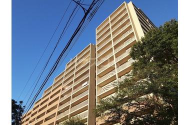 塚田 徒歩15分 5階 4LDK 賃貸マンション