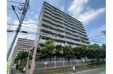 プロスペール谷塚壱番館 8階 3LDK 賃貸マンション