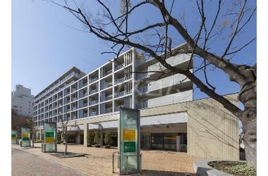 アクティ目黒駅前 1号棟 6階 2LDK 賃貸マンション