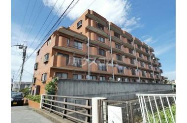 八柱 徒歩15分 5階 3LDK 賃貸マンション