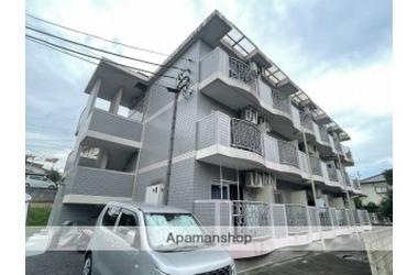 TNサニーハイツ 1階 1R 賃貸マンション