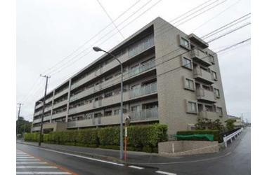 サーパス東石川 4階 3LDK 賃貸マンション