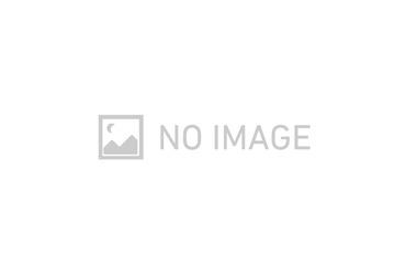 加茂宮 徒歩6分 2階 3DK 賃貸マンション