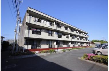 谷津 徒歩9分 1階 3LDK 賃貸アパート