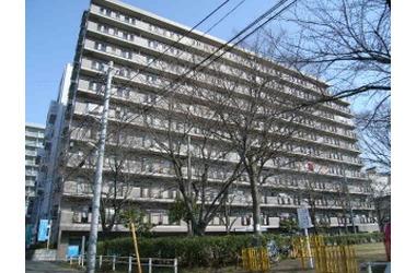 新八柱 徒歩4分 1階 3LDK 賃貸マンション