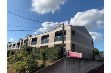 ティープラントⅡ 1階 1LDK 賃貸アパート