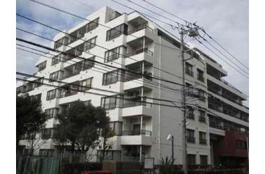 シティコートフドウ中山 5階 3LDK 賃貸マンション