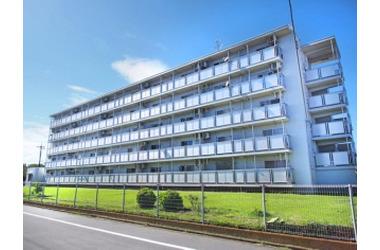 ビレッジハウス秋多2号棟 2階 3DK 賃貸マンション