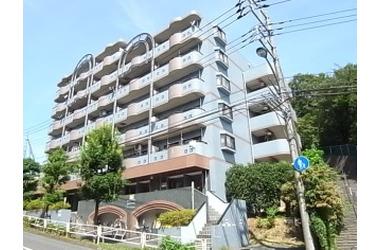 FIFTH FRONTIER 5階 3DK 賃貸マンション