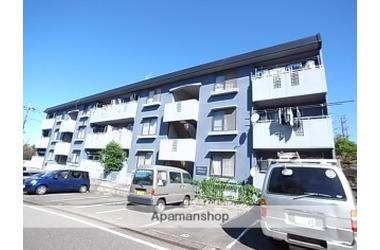 グランディールYAMANI 1階 3DK 賃貸マンション