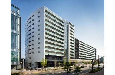 パークハビオ渋谷本町レジデンス 10階 1LDK 賃貸マンション