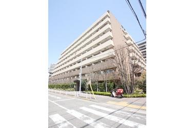 プライムアーバン豊洲 9階 1LDK 賃貸マンション