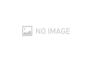武蔵砂川 徒歩5分 1階 3LDK 賃貸マンション