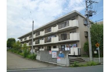 第2かしの木ハイツ 3階 3LDK 賃貸マンション