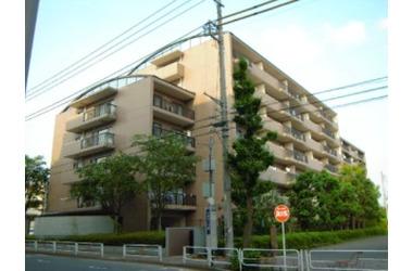 ゼルコバ・コーポラス 4階 3SLDK 賃貸マンション