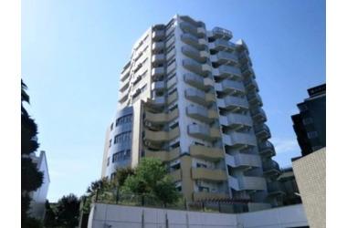 コラム神泉 8階 1LDK 賃貸マンション
