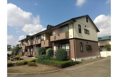 ロイヤルガーデン ABC 2階 2DK 賃貸アパート