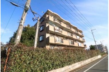 ベルクハウス 2階 3DK 賃貸マンション