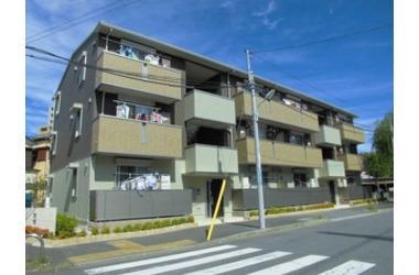 新柴又 徒歩7分 1階 1LDK 賃貸アパート