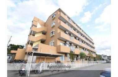 VERNAL HOUSE 5階 3LDK 賃貸マンション