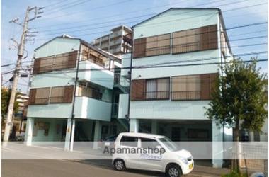 サンヨーⅡ 2階 2DK 賃貸マンション
