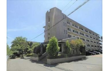 シテ・リヴェール 3階 3LDK 賃貸マンション