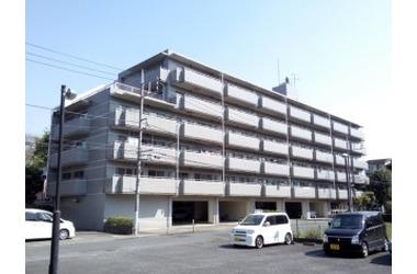 レジデンス伊藤Ⅱ 3階 3DK 賃貸マンション