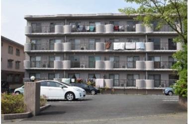ベルヴェデーレII 3階 3LDK 賃貸マンション