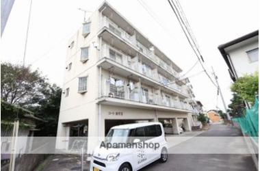 コート紙町Ⅲ 3階 1K 賃貸マンション