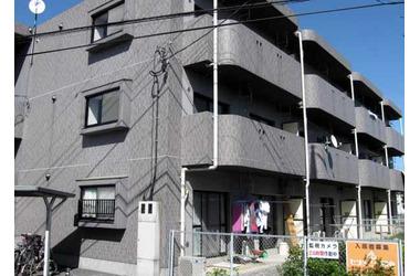 シティパレス3階3LDK 賃貸マンション