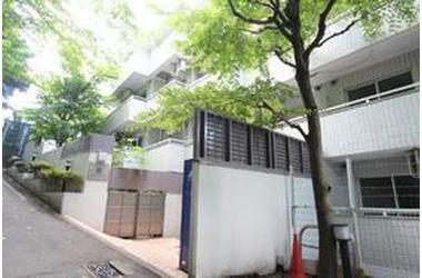 石川町 徒歩5分 1階 1R 賃貸マンション
