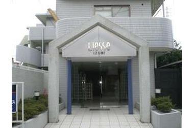 リエス泉1階2DK 賃貸マンション