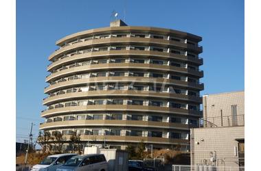 セラヴィ坂崎 5階 1K 賃貸マンション