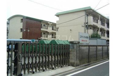 大泉学園 バス5分 停歩5分 2階 2DK 賃貸マンション